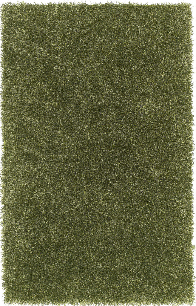 Dalyn Belize BZ100 Kiwi Rug